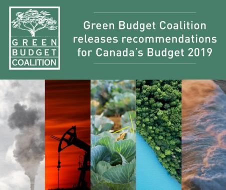 The cover of the Green Budget Coalition recommendations for 2019, featuring images of food, water, forests, and air pollution.